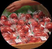 道の駅とよとみの新鮮な野菜トマト
