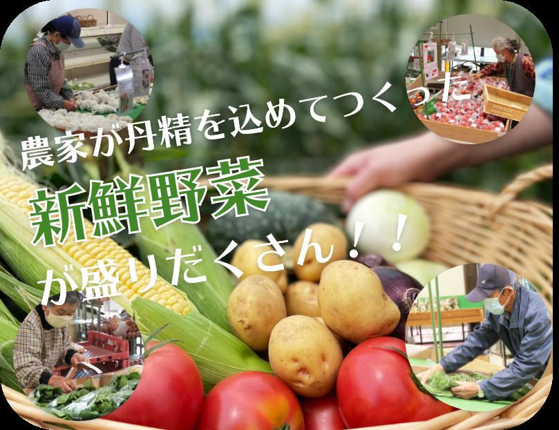 道の駅とよとみの旬な新鮮野菜