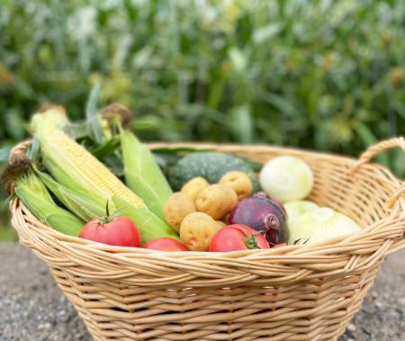 新鮮・安全・安心な各種お野菜